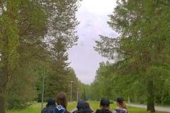 Metsätähdet Rakkomarssilla 06/21